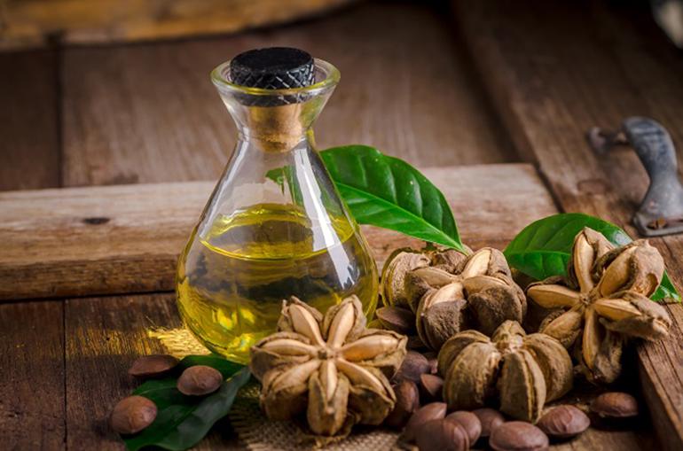 什麼是印加果油?