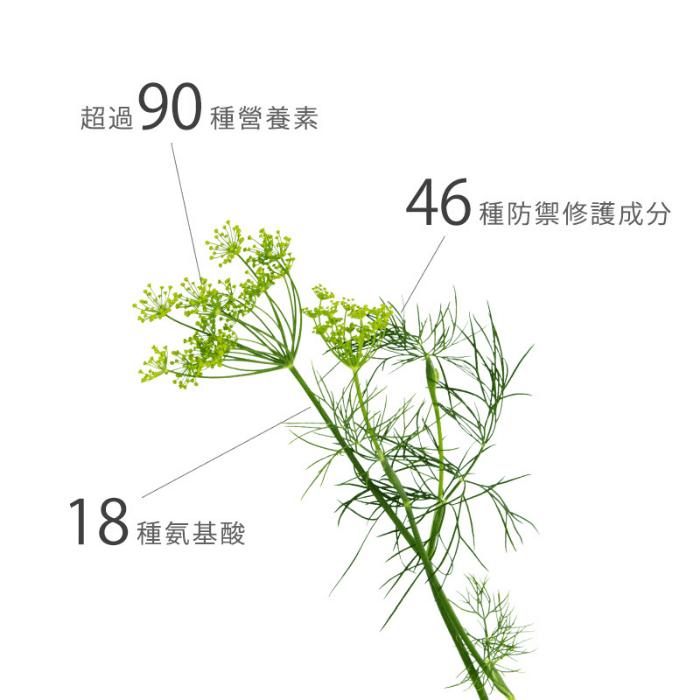 海茴香有超過90種營養素46種防禦修護成分18種氨基酸